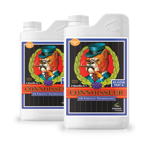 Conoisseur Bloom A+B PH Perfect Advanced Nutrients