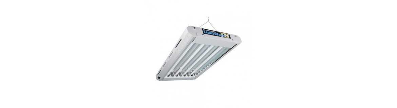 Lampe complète Néons